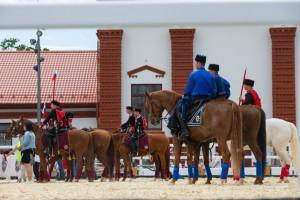 14 -19 сентября - фестиваль «Конные традиции России» на ВДНХ