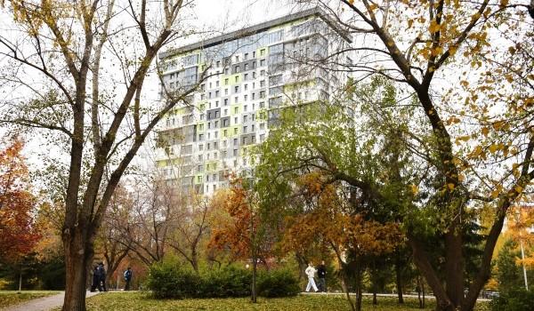 Более 10 тыс. деревьев обследовали в Москве с начала года в рамках сезонного мониторинга
